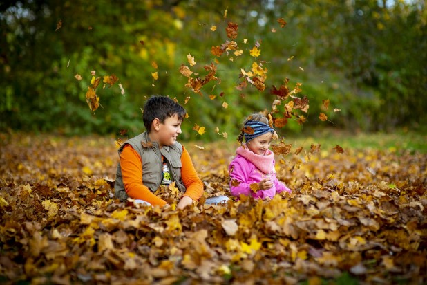 little boy and girl playing in pile of autumn leaves