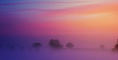 a photo of dawn